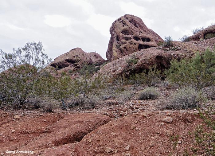 72-Desert-GAR-Sunday-011016_565