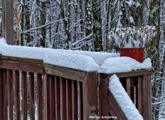 72-Later-Last-Snow-032116_018