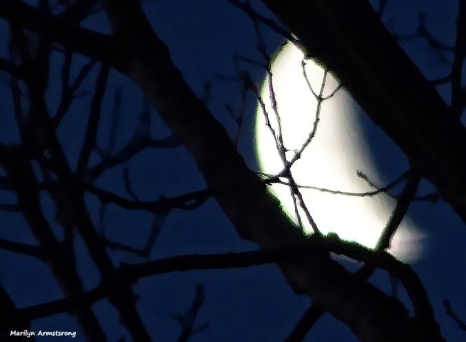 72-Moon-set-030316_012