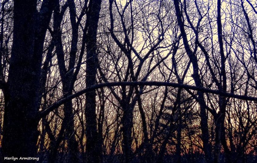 72-Sunrise-022716_09
