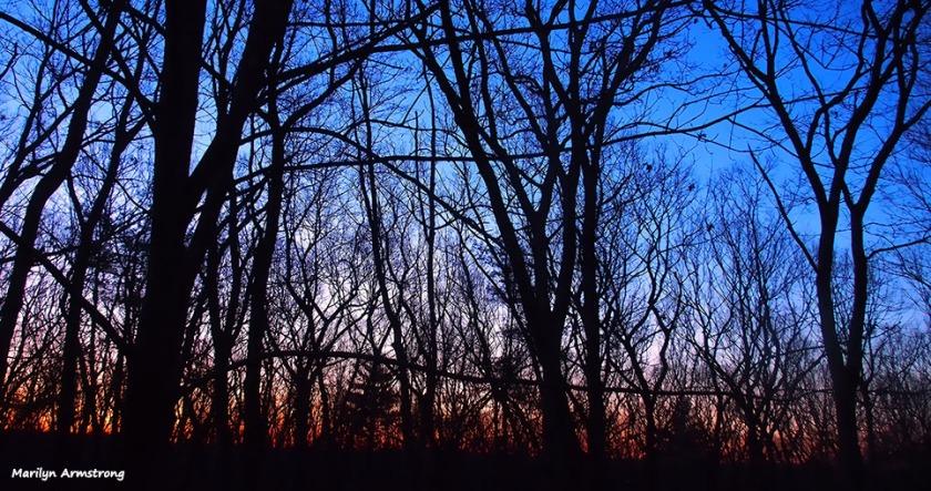 72-sunrise-030316_019