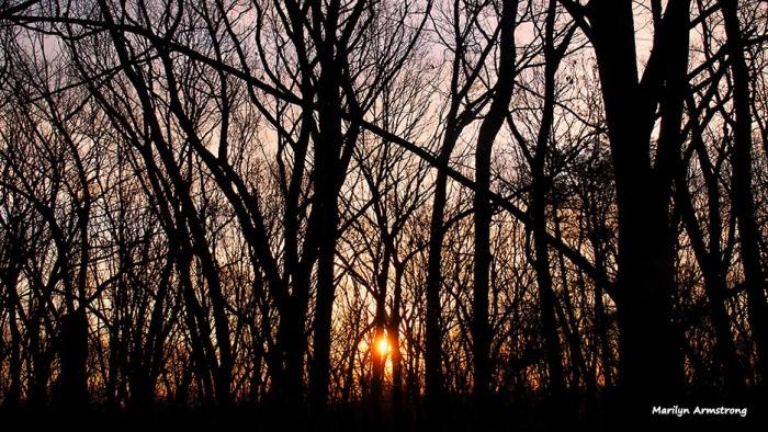 72-sunrise-030716_03