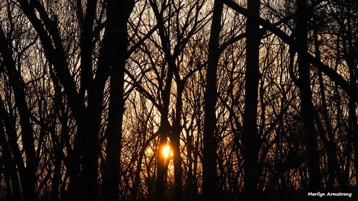 72-sunrise-030716_05