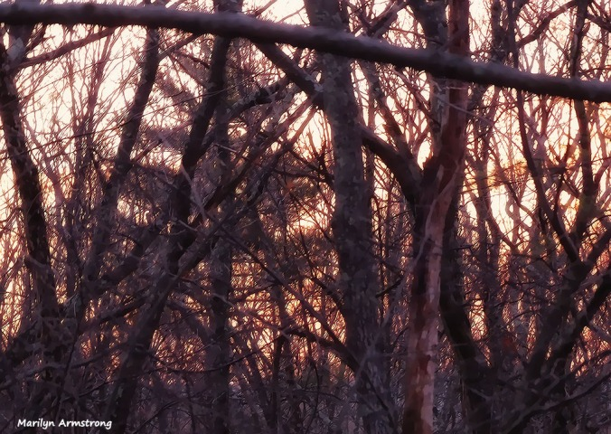 72-Sunrise-Early-AM-031216_09