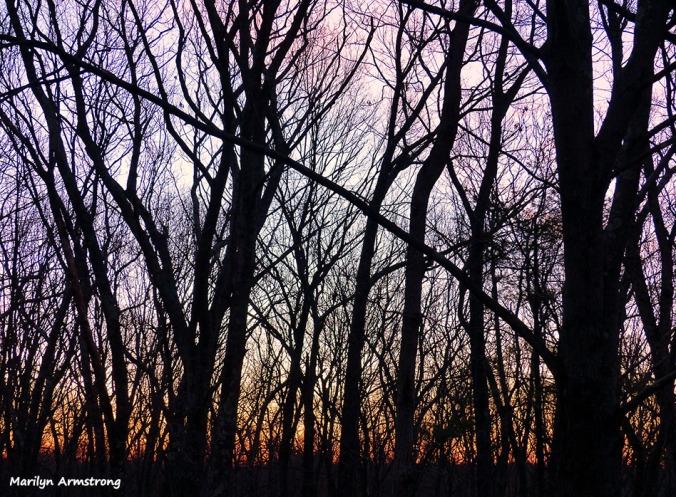 72-Sunrise-Early-AM-031216_13