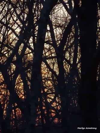 72-Sunrise-Vernal-Equinox-2016-032016_008
