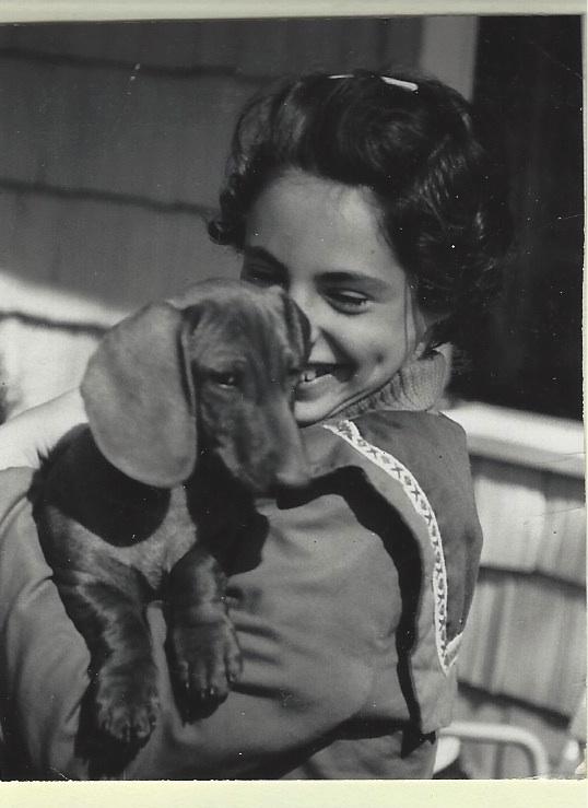 ellin curley dachshund