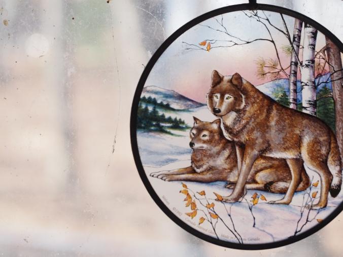 wolf-window-030916_06
