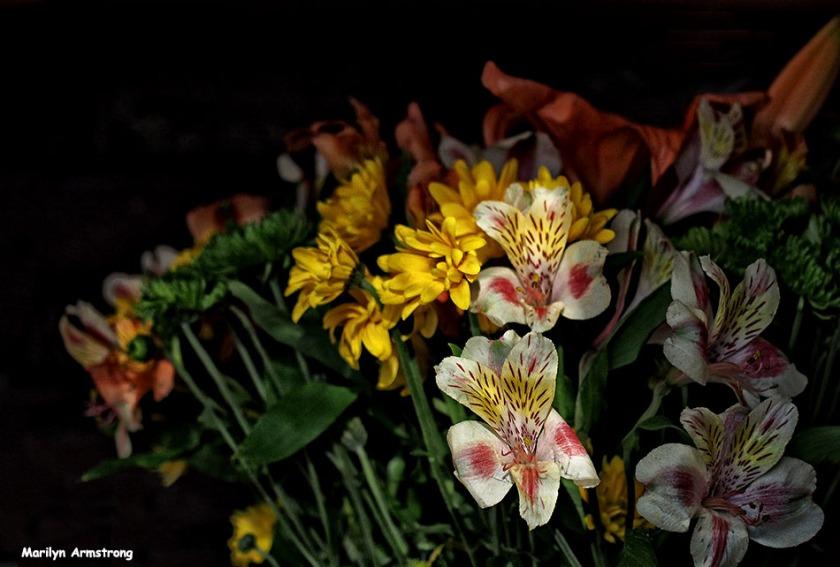 72-april-bouquet-041116_02