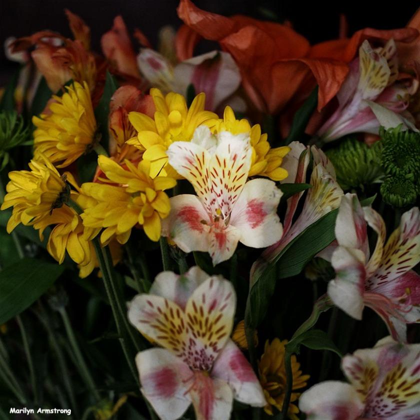 72-april-bouquet-041116_04