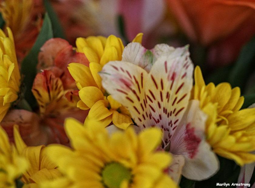 72-april-bouquet041016_07