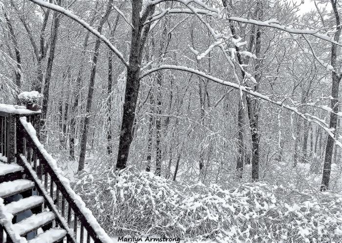 72-April-Snow-040316_05