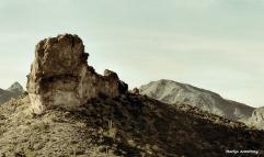 72-Desert-newer-MAR-Superstition-011316_149