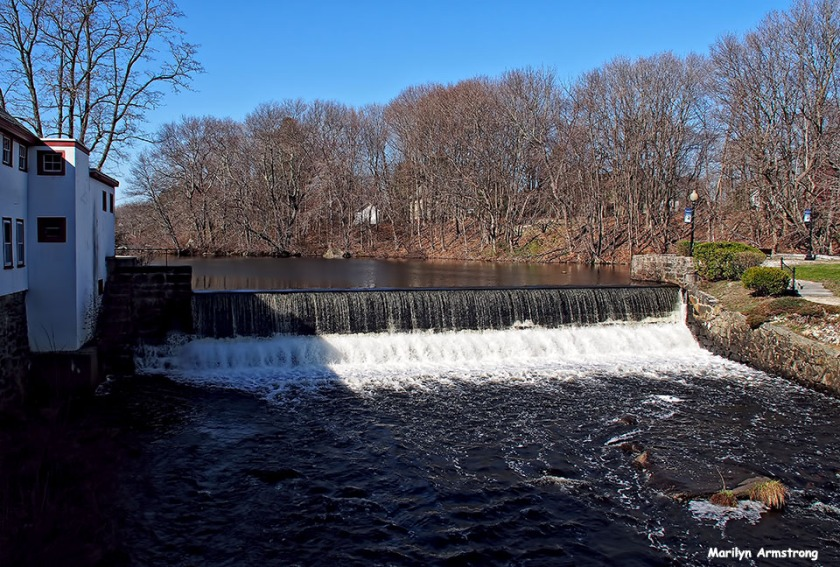 Dam on the Mumford in mid-April