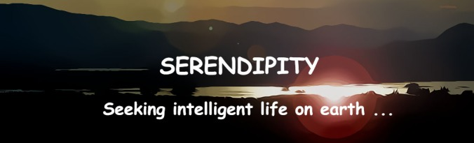 SERENDIPITY HEADER--Flare-AtteanView_003