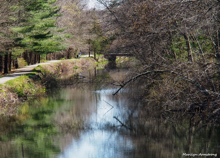 72-canal-042716_032