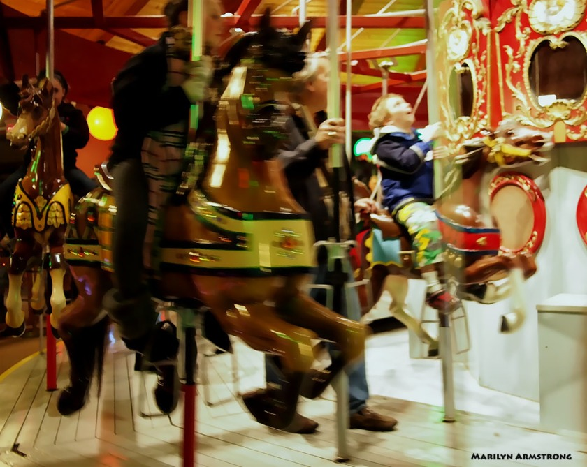72-jubilation-carousel_017