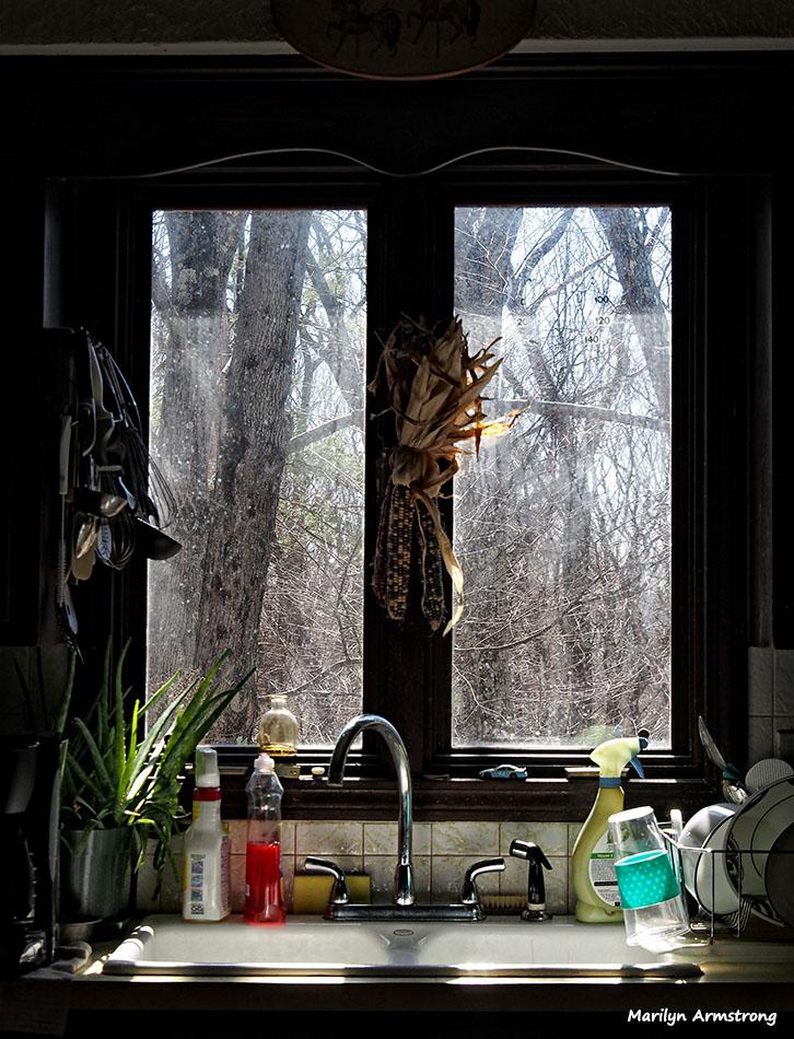 72-kitchen-sun-morning-033016_004