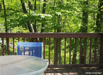 72-morning-deck-mundane-monday-052316_030