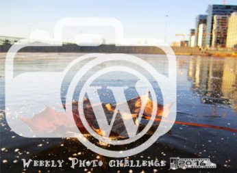 I participate in WordPress' Weekly Photo Challenge 2016