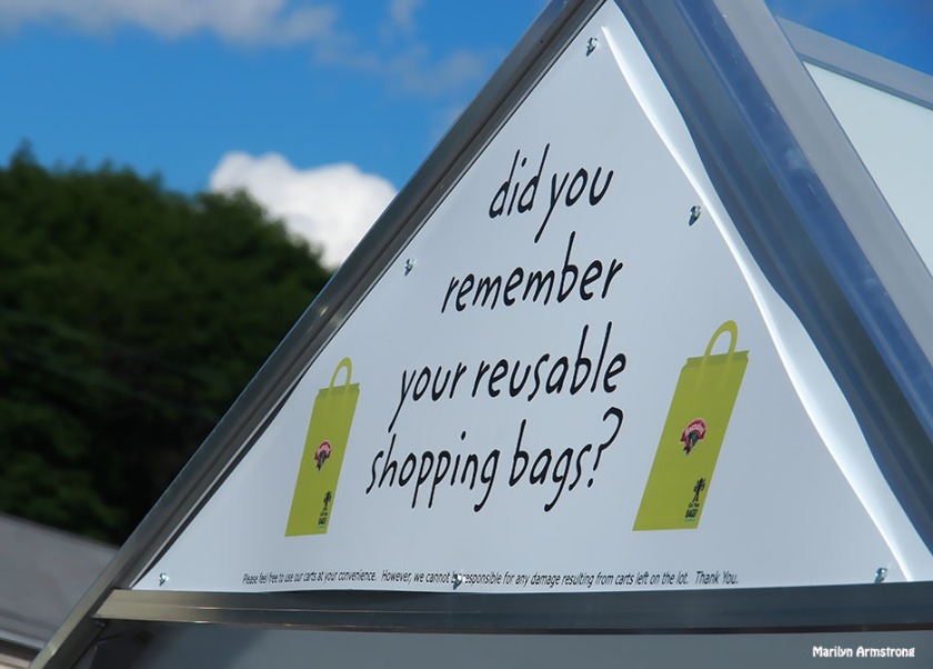 Don't forget your reusable shopping bags!