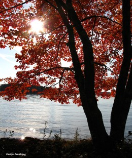 Autumn at the lake in Webster