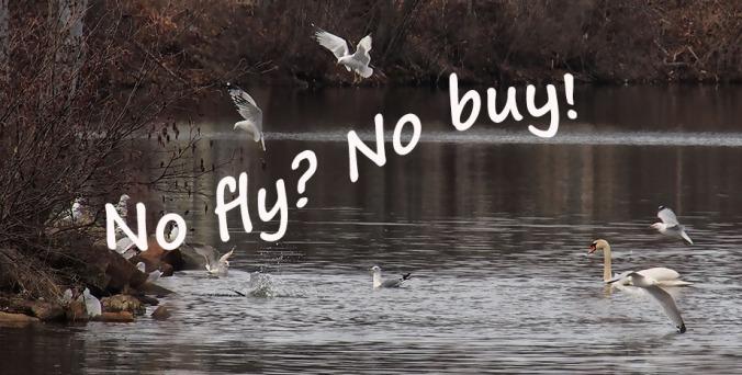 no fly no buy shooting