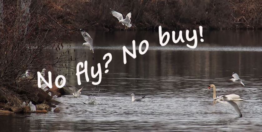 no fly no buy shooting