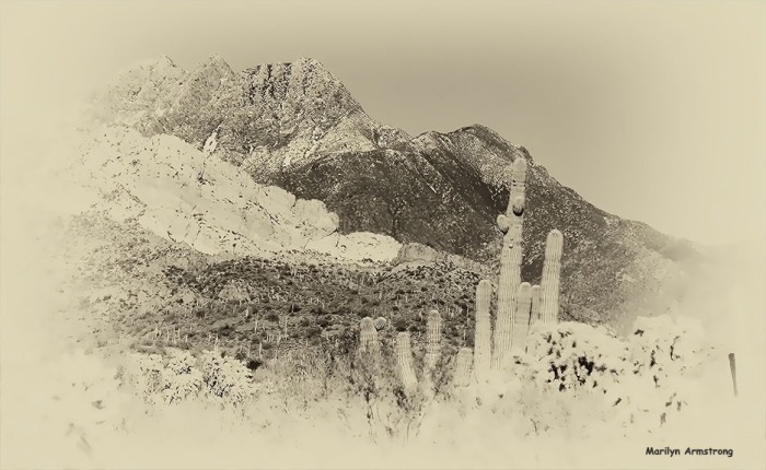 72-BW-Old-West-MAR-Superstition-011316_097