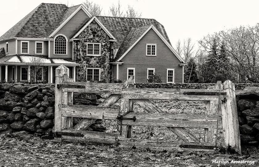 Fences And Gates In Black White Serendipity Seeking Intelligent