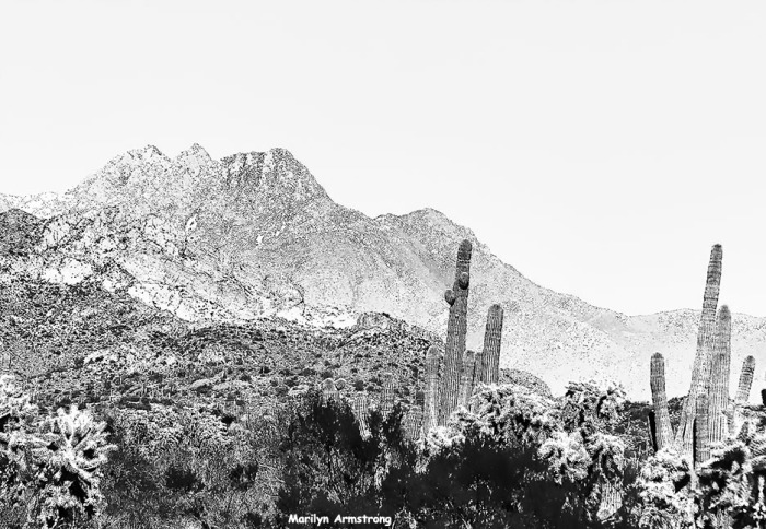 The Superstitions are big, but so are the saguaro ... and that wonderful, big sky ...