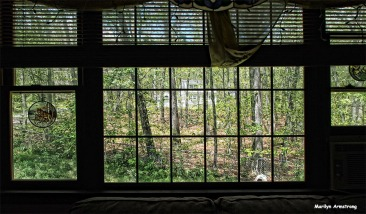 72-picture-window-at-home-071916_12