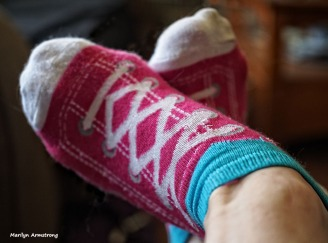 72-socks-070216_06
