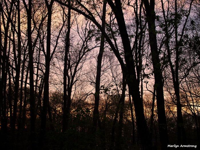 72-sunset-070316_01