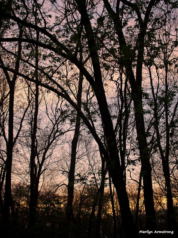 72-sunset-070316_03