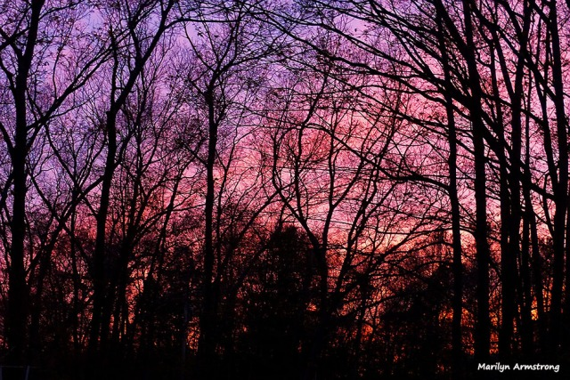 72-Sunset-2-070316_21