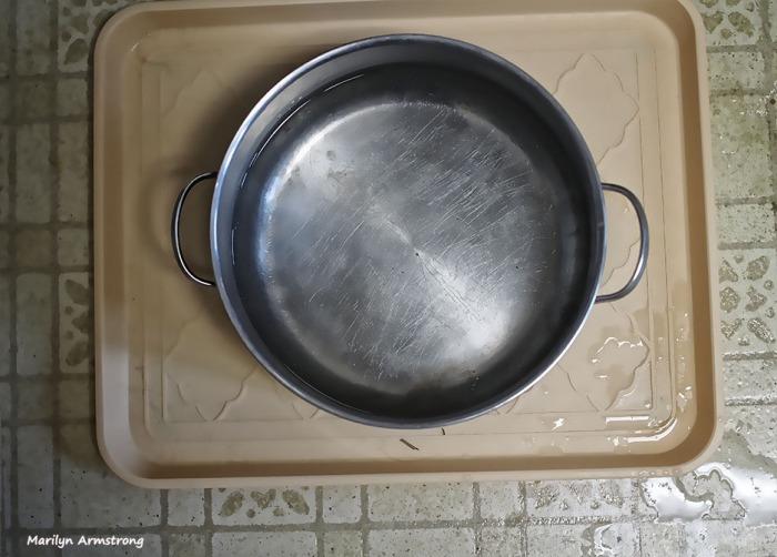 72-water-dish-kitchen-home-070516_02