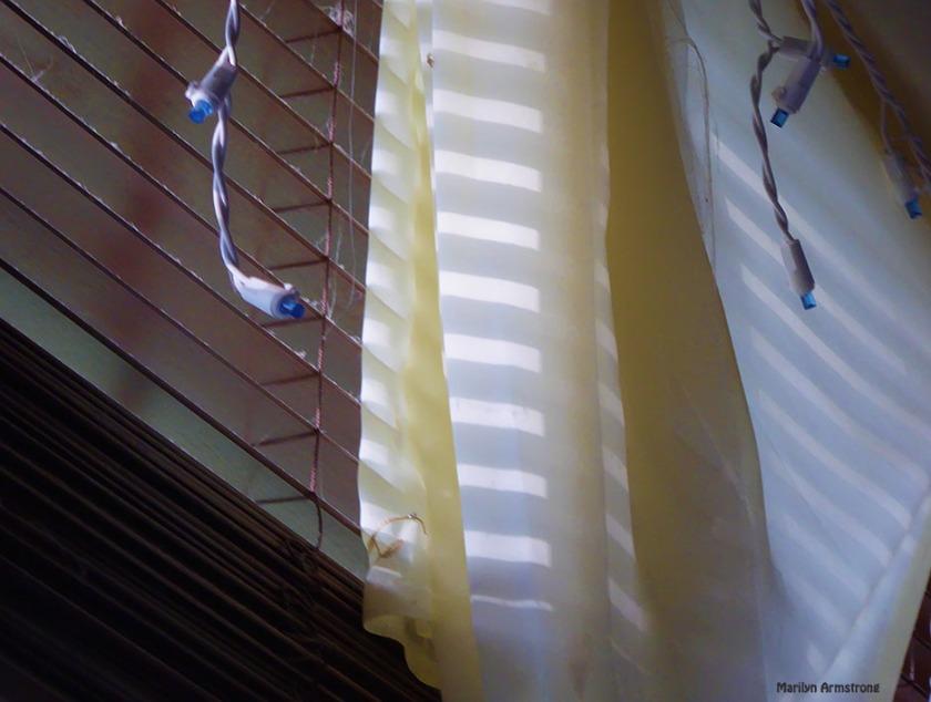 72-Afternoon-Light-081416_001