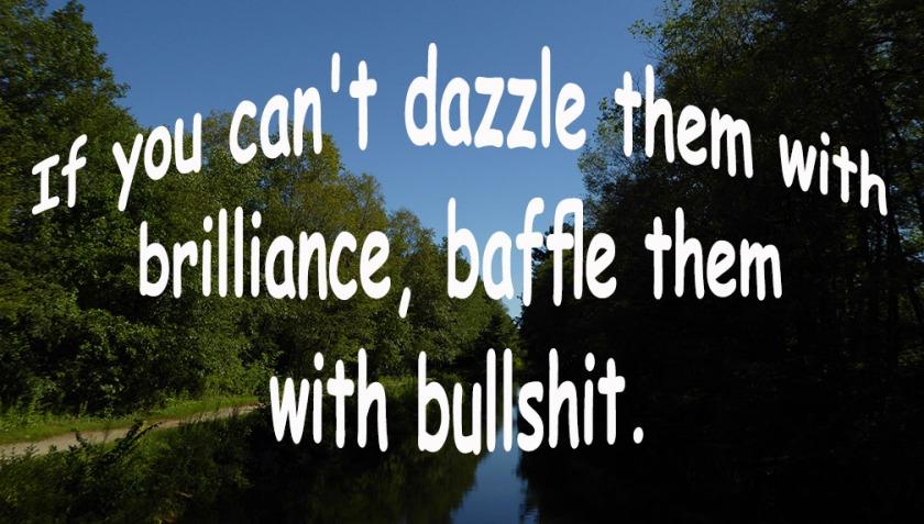 72-BAFFLE WITH BULLSHIT-Canal-082216_52