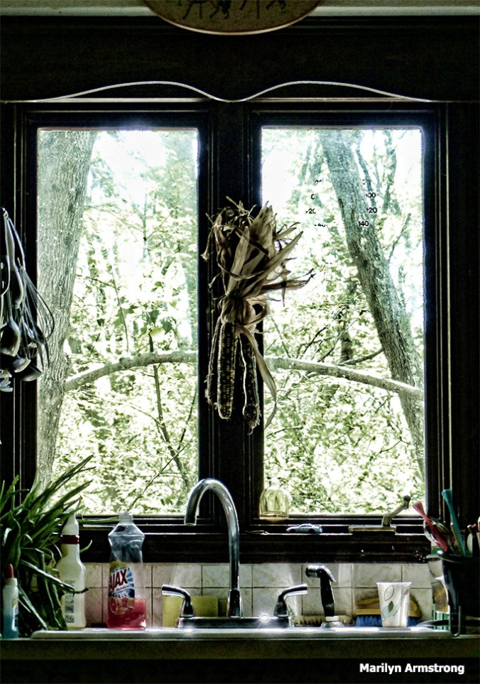 72-Bright-Kitchen-Window-080316_02