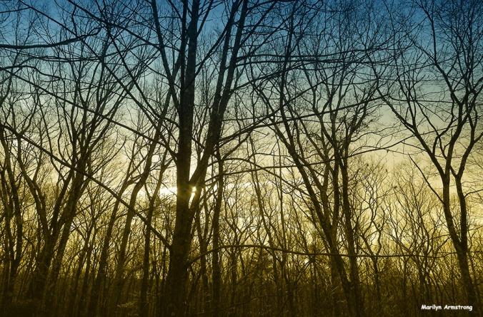 Bi-tonal moon setting at sunrise