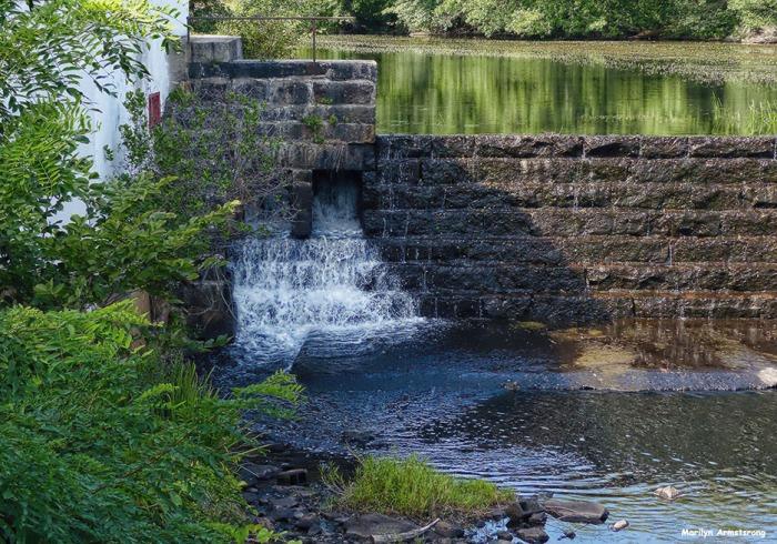 72-Dam-Mumford-MA-082516_012