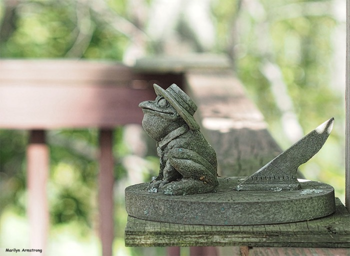 72-frog-on-deck-082916_026