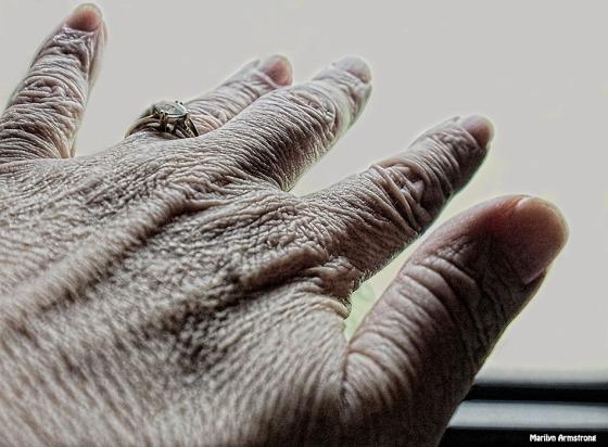72-my-hand-081616_002