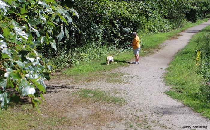 72-Path-Dog-Canal-GA-082216_46