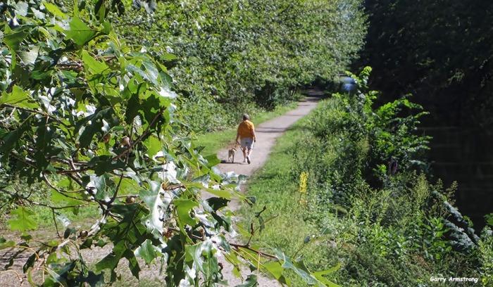 72-Path-Dog-Canal-GA-082216_49