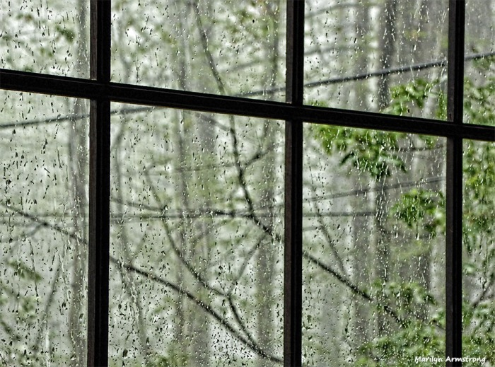 72-Rain-080616_04