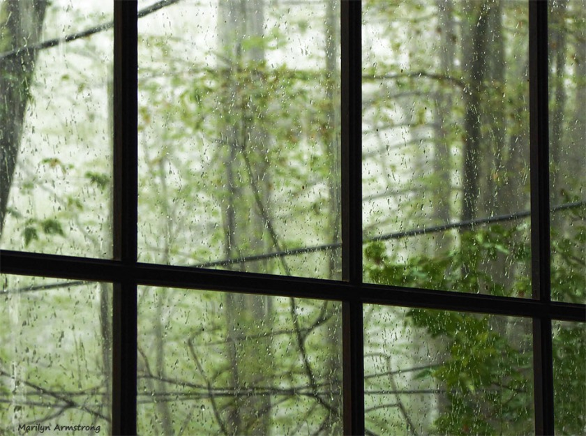 72-Rain-080616_05