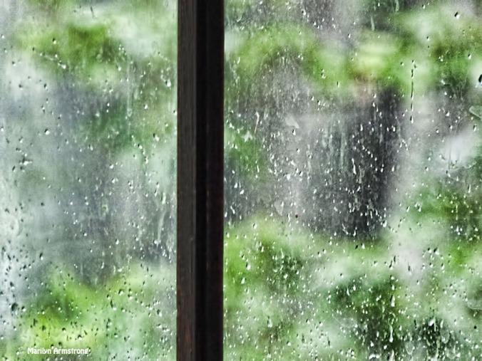 72-Rain-2-081016_011