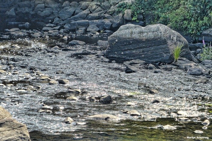 72-River-Mumford-MA-082516_071